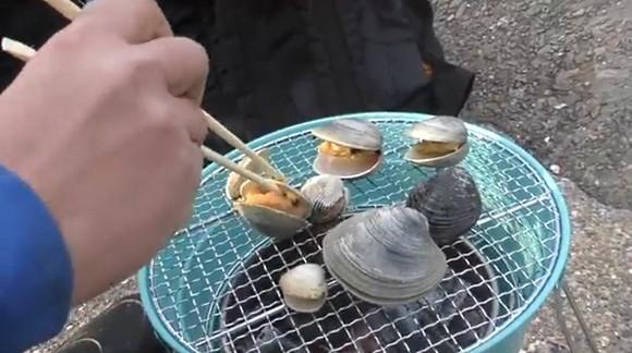 アサリ オキシジミ 赤貝 ホンビノス 潮干狩り ハイサイ探偵団