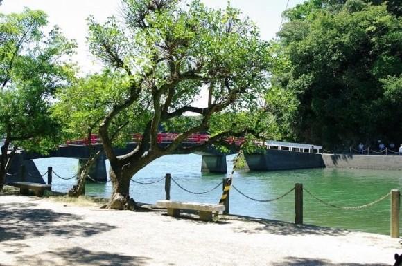 高知 ツヅキ島 赤橋 釣り