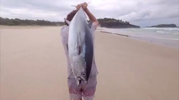 Drone Tuna ドローンで釣り マグロ