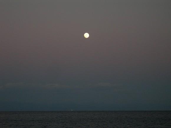 2018年1月1日 元旦 夕マズメの月