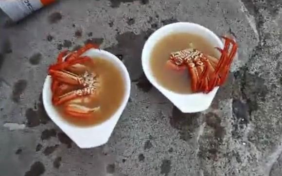 マガニ 味噌汁
