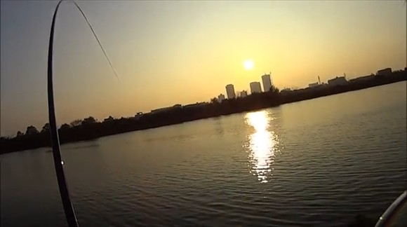 コイ釣り 夕日 パンプカ