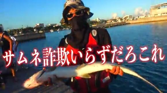 カライワシ ひっちゃん ハイサイ探偵団