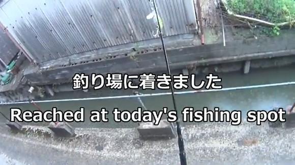 家の中からルアー釣り