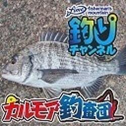 チヌ ニコ生 fimo 釣りチャンネル カルモア釣査団
