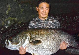 浦戸湾 アカメ 134cm 34kg (画像引用元:高知新聞、小池裕幸さん)