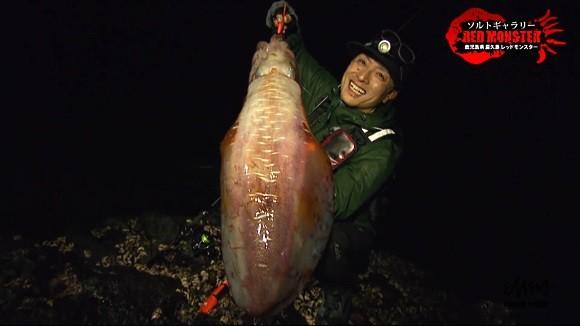 湯川マサタカ アオリイカ 4.8kg レッドモンスター