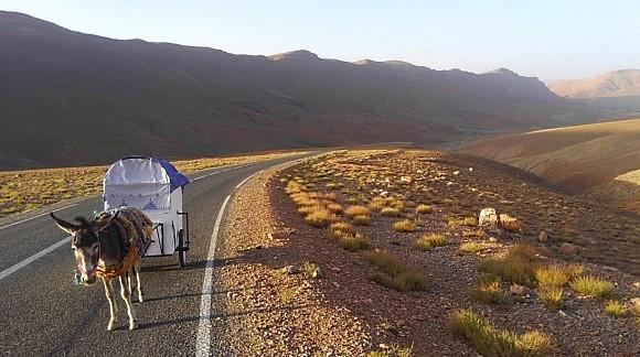 冒険家 豪太郎 Go 行商人 キャラバン モロッコ ロバ 放浪の旅