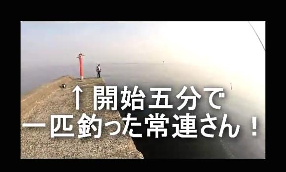 シーバス 沖堤防