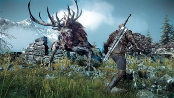 witcher3  PS4