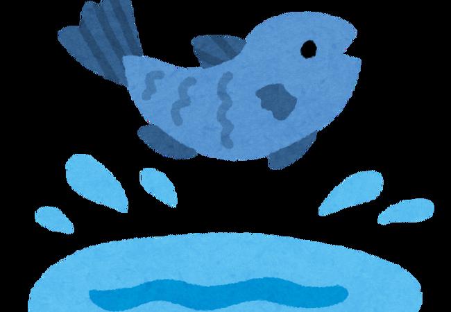 fish_jump