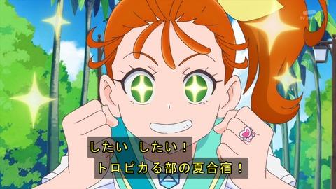 トロピカル~ジュ!プリキュア 21話 感想 495