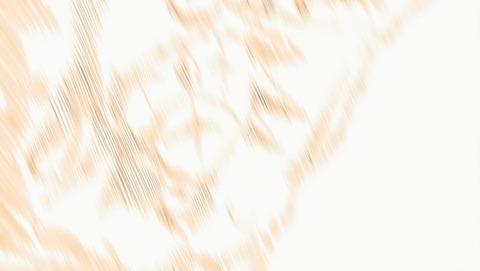 ANCB002675