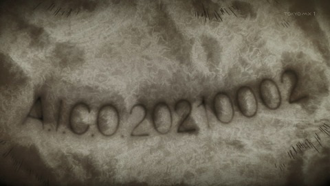 ANCB002381