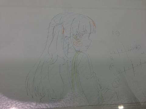 D (15)