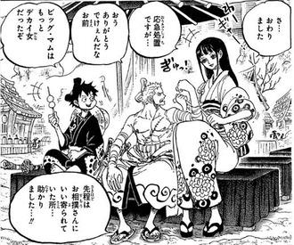 【ワンピース】お菊とゾロ、体格差が凄い(画像)