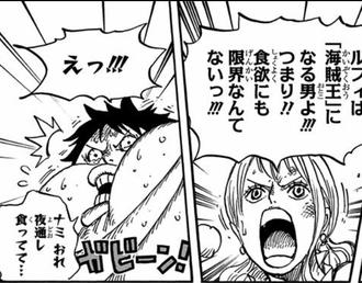 【ワンピース】ナミさんの無茶ぶりひどくない?