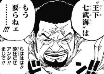 【ワンピース】藤虎の王下七武海廃止する意見って正論だよな