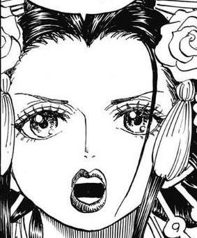 【悲報】ワンピースのロビンと小紫、見分けがつきにくい…