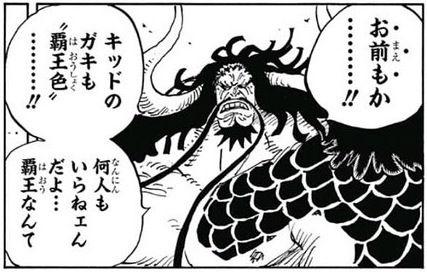 【ワンピース】覇王色のキャラ、増えすぎてバーゲンセール状態