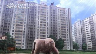 zimage00536-50