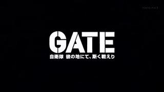 gate (167)