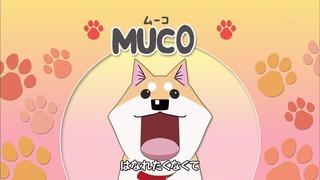 muco (1)