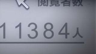 cap (24)