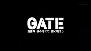 gate (61)