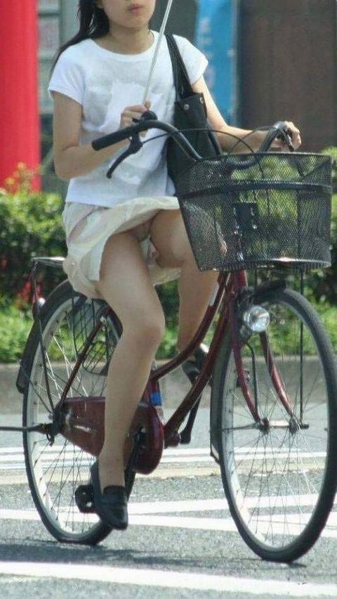 【有名人,素人画像】(悲報)ワイ、自転車パンチラシロウト小娘のせいで自動車事故起こすwwwwwwwwwwwwwwwwwwwwwwww(画像あり)