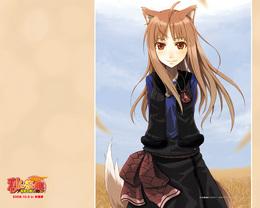 狼と香辛料_4 1280×1024