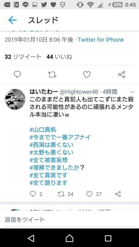 いなぷう軍団の一員の「はいたわー」って松井珠理奈の生誕委員長だったらしいが・・・