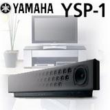 YSP-1