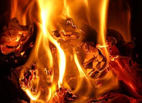【胸糞】アイドルのライブ中に放火した男「京アニ事件まねした」の画像