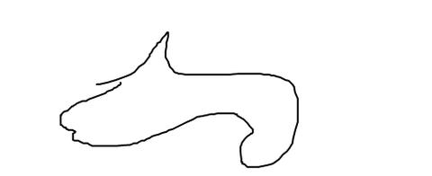 livejupiter-1514441969-66-490x200