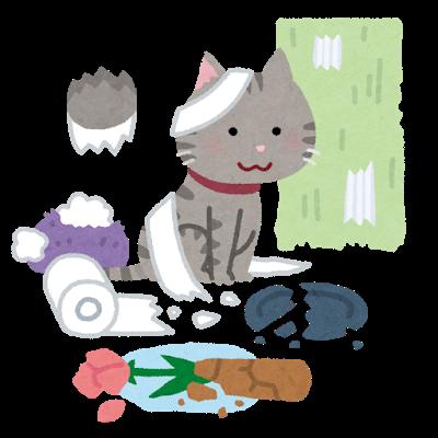 pet_cat_hakai