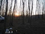 陽も落ちてきました