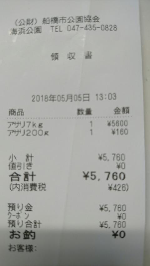 DSC_0667_1