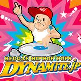 dyna_web2
