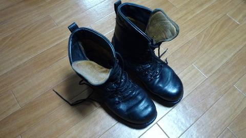 BW combat boot