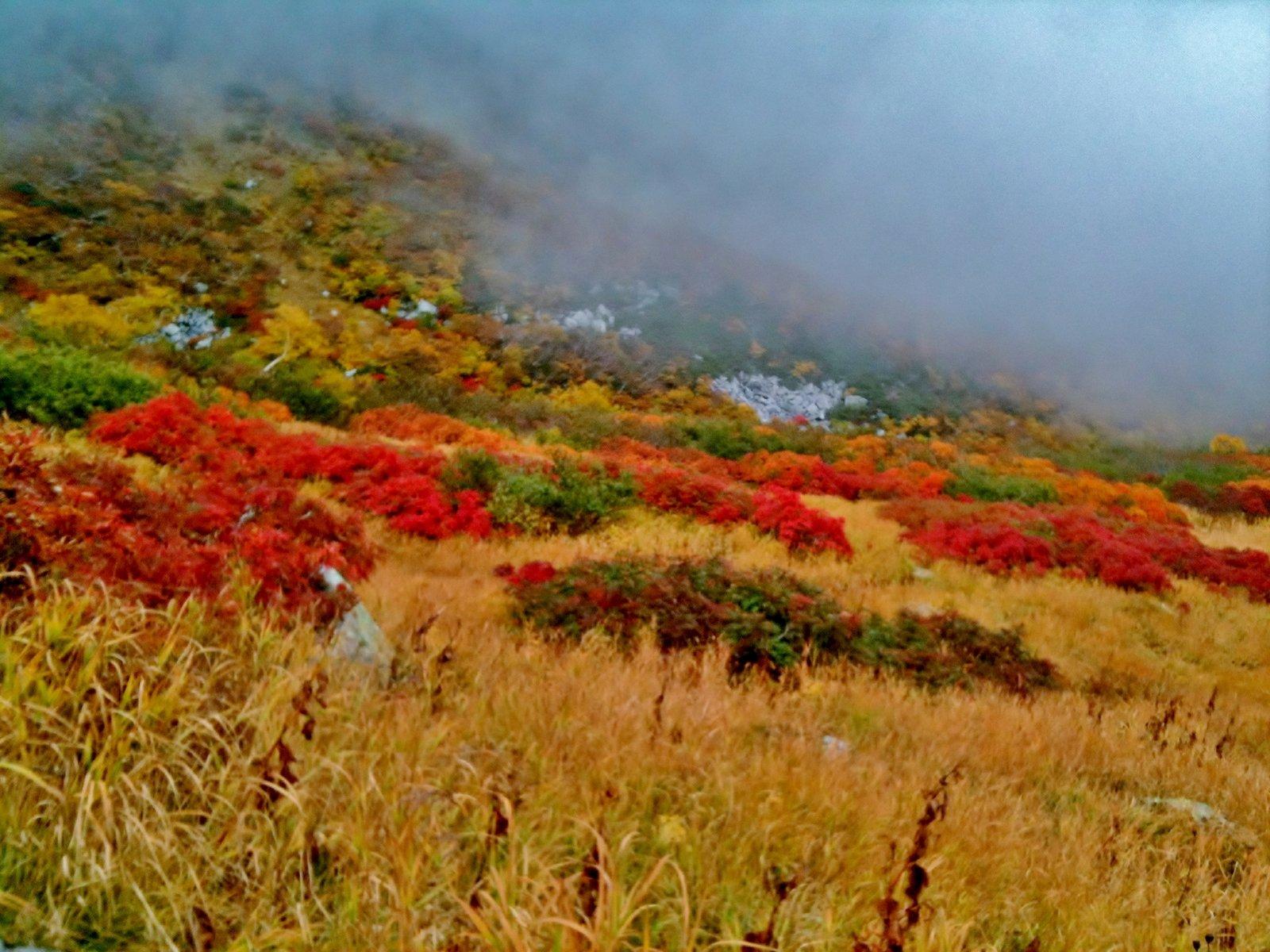 団塊世代の近江日記   木曽駒ヶ岳 千畳敷カール紅葉ロード コメントトラックバック