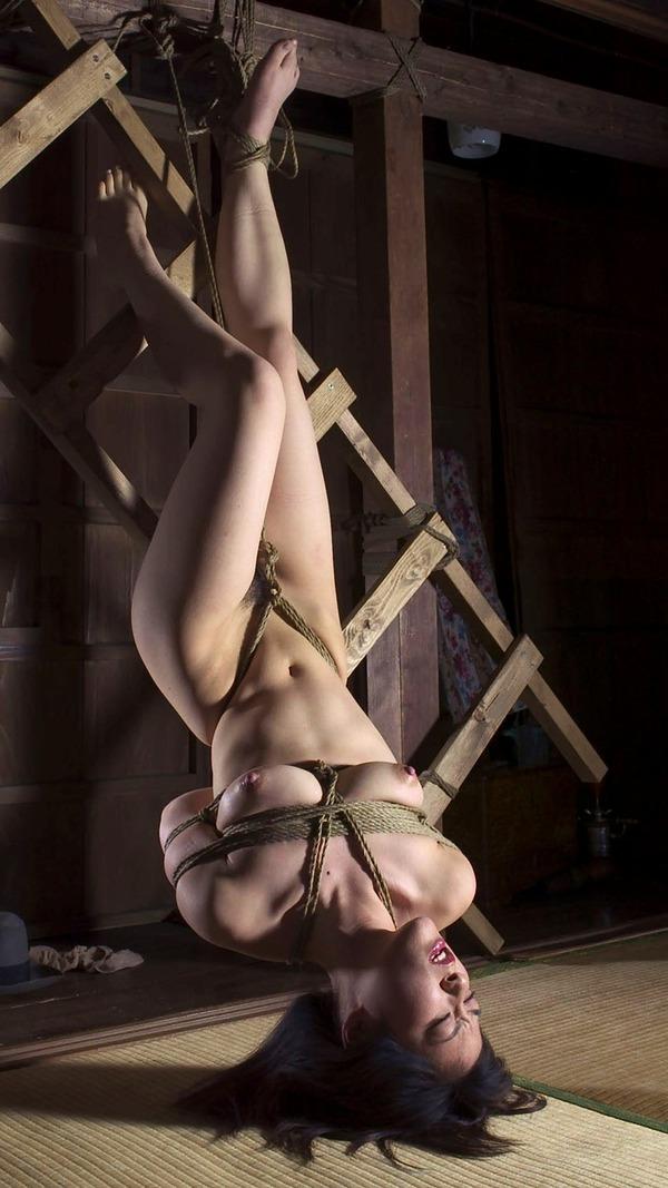sm_hanging_ 07