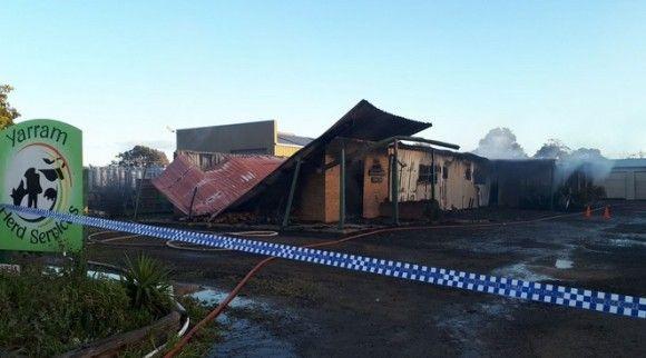 家畜研究所の火災で牛の精液が大量放出。前代未聞の火災現場に(オーストラリア)