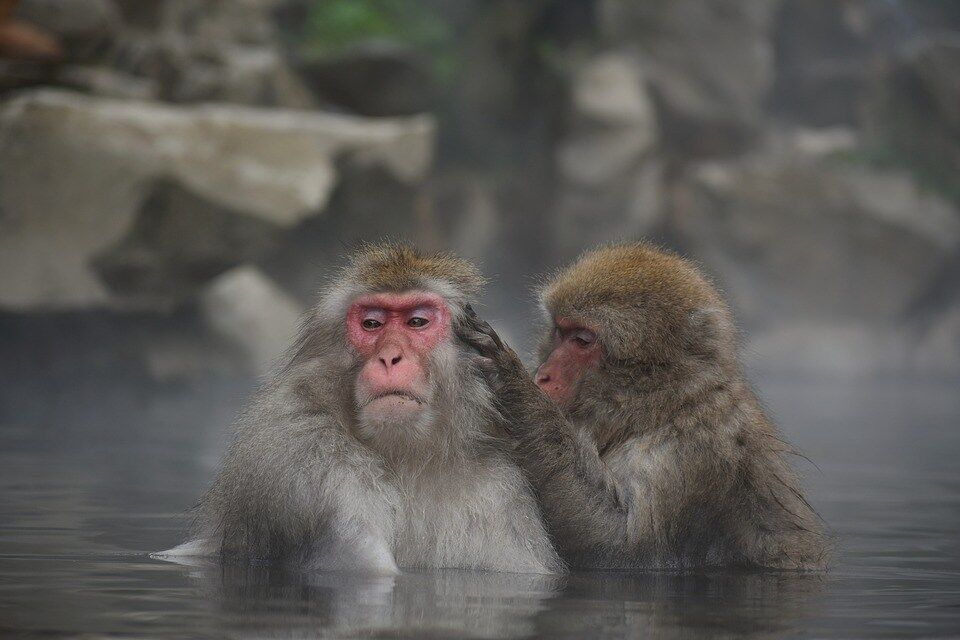 【雑学】昔の人って風呂とかどうしてたの?