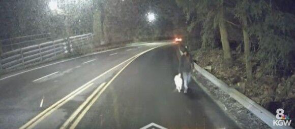 男性が連れていた犬に違和感を感じたバス運転手、犬が盗まれていたことに気づき飼い主に返す(アメリカ)
