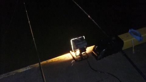 【ホラー】楽しい夜釣りが狂気の夜に・・・