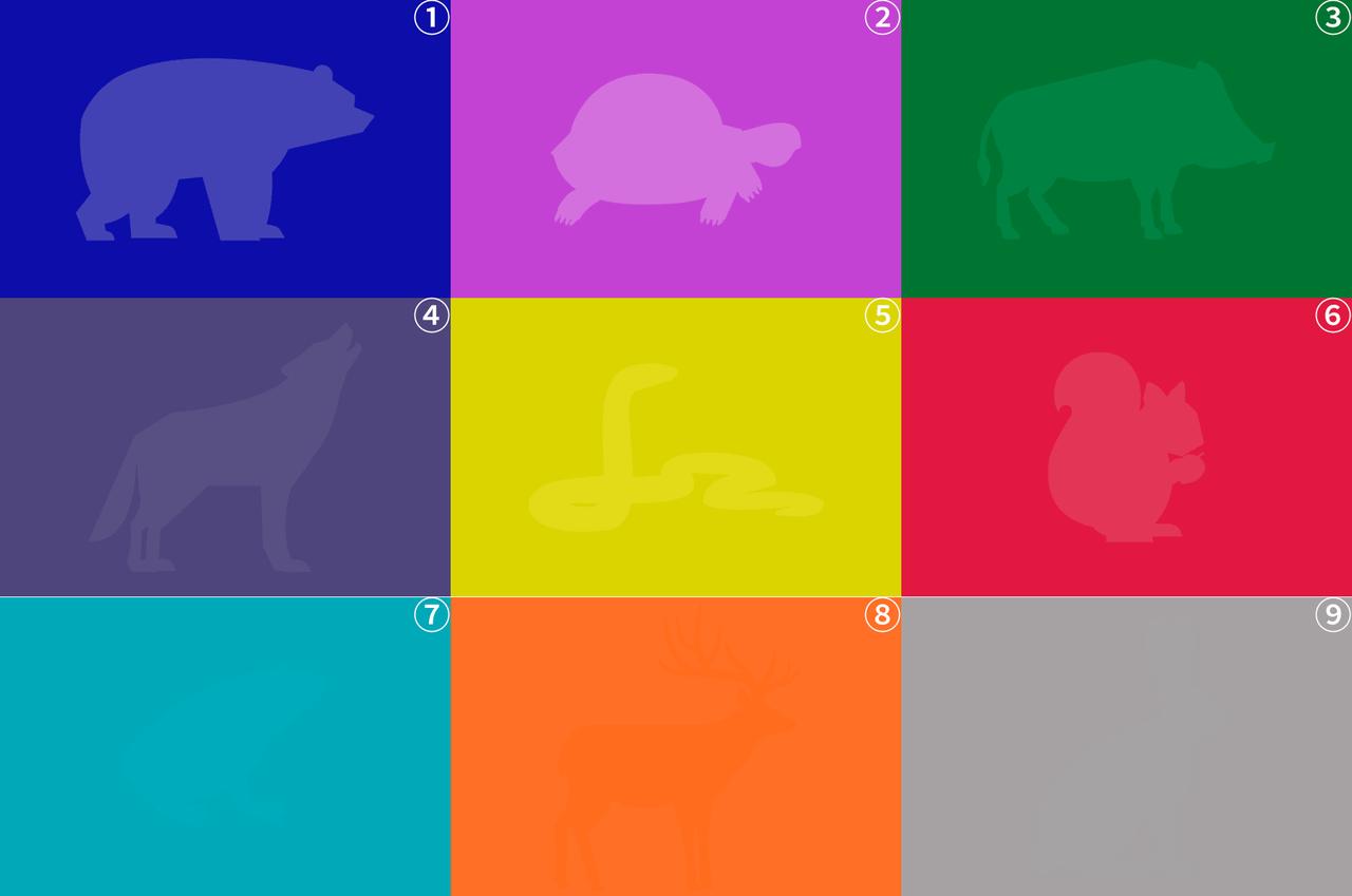 【画像あり】この色盲のテスト画像wwwwww