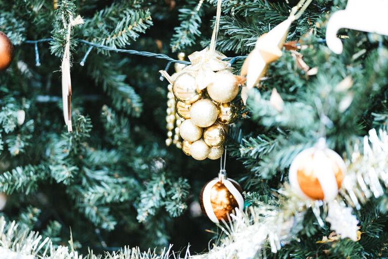 でっかいクリスマスツリーで有名な某湖に行った時の話