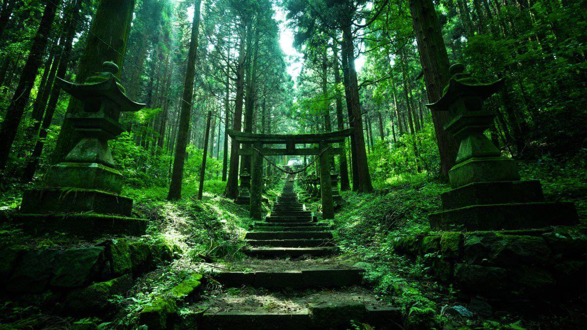 【画像あり】もっとも素敵で神秘的な神社、ツイッターで話題沸騰