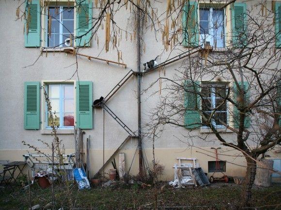 猫たちが自由に出入りできるように。スイスには建物の壁に設置された猫専用の外階段がいたるところにある